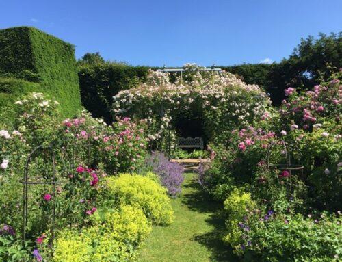 Des jardins intéressants à visiter en Europe